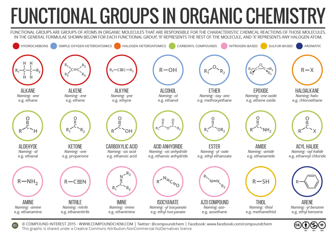 Amino Functional Group Properties